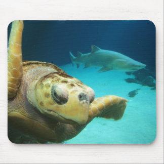 Tortuga de mar y tiburón Mousepad