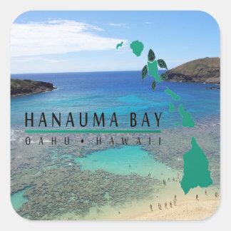 Tortuga de Oahu de la bahía de Hawaii Hanauma Pegatina Cuadrada