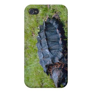 Tortuga de rotura de cocodrilo iPhone 4 protectores
