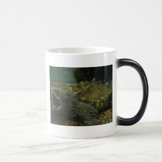 tortuga de rotura de cocodrilo taza de café