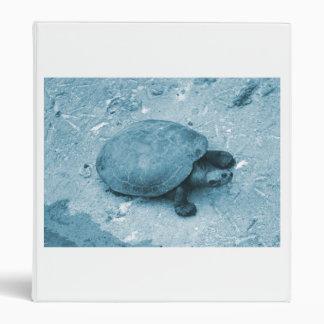 """tortuga del agua en reptil azul del tinte del carpeta 1"""""""