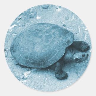 tortuga del agua en reptil azul del tinte del pegatinas redondas