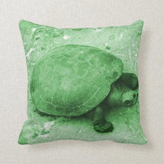 tortuga del agua en reptil del verde del banco cojines