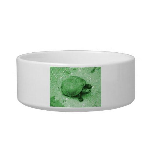 tortuga del agua en reptil del verde del banco tazones para comida para gato