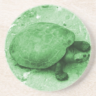 tortuga del agua en reptil del verde del banco posavasos personalizados