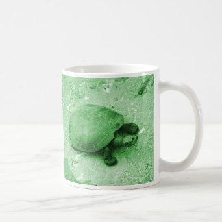 tortuga del agua en reptil del verde del banco tazas