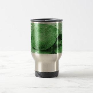 tortuga del agua en reptil del verde del banco taza