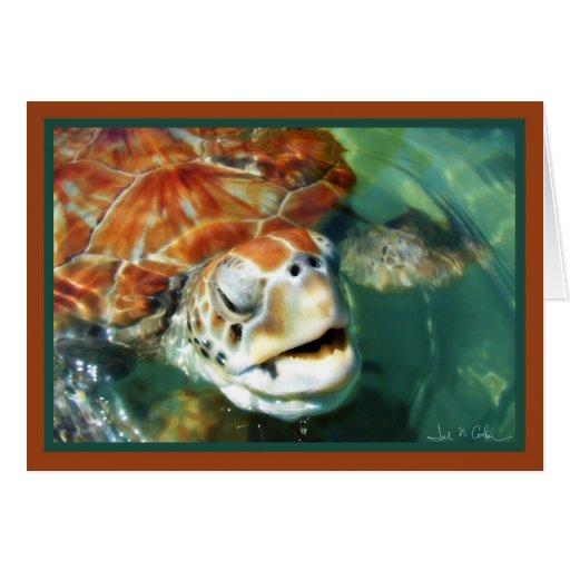 Tortuga del caimán tarjeta de felicitación