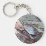 Tortuga del río llavero personalizado