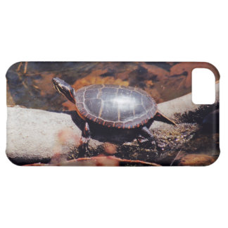 Tortuga feliz funda para iPhone 5C