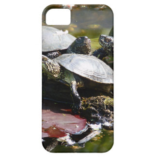 Tortuga iPhone 5 Case-Mate Protectores