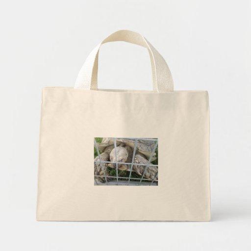 Tortuga gigante bolsas