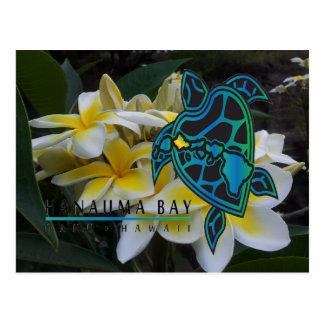 Tortuga Honu - flores de Hawaii del Plumeria Tarjeta Postal