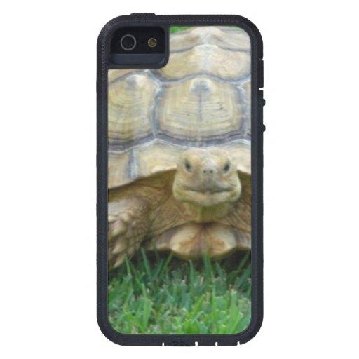 Tortuga iPhone 5 Case-Mate Cobertura