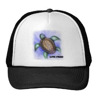 Tortuga libre viva gorras