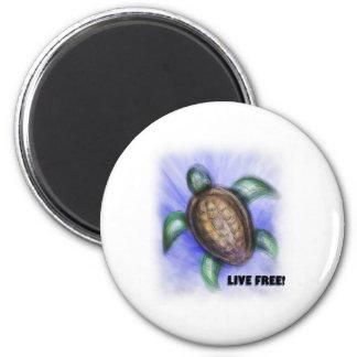 Tortuga libre viva imán