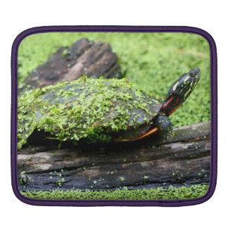 Tortuga linda cubierta en verde divirtiéndose funda para iPads