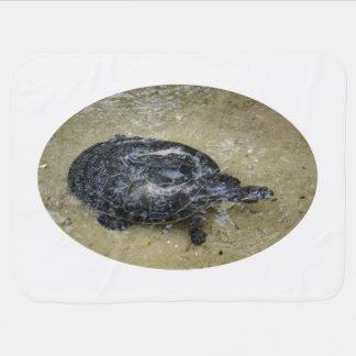 tortuga manchada que viene regar la superficie mantita para bebé