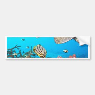 Tortuga Naturescape del arrecife de coral Pegatina De Parachoque