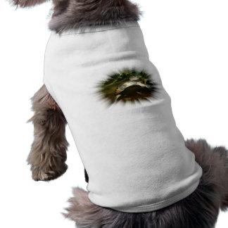 Tortuga Necked lateral africana en un marco de la Camiseta De Perrito