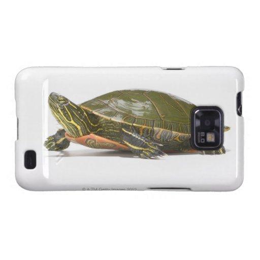 Tortuga pintada occidental (bellii del picta del C Funda Para Samsung Galaxy S2