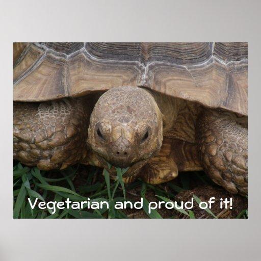 Tortuga que come la fotografía vegetariana orgullo poster