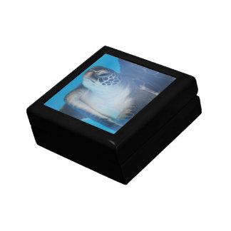 Tortuga subacuática cajas de joyas