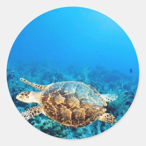 Tortuga submarina pegatina redonda