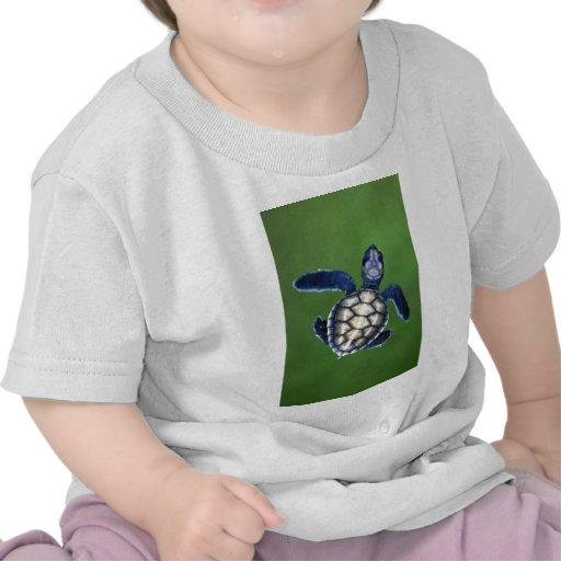 Tortuga verde del bebé camisetas