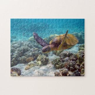 Tortuga verde puzzles con fotos
