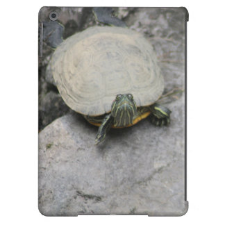 Tortuga vieja irritable en roca en la charca funda para iPad air