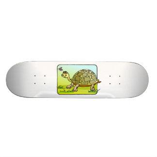 Tortuga vigilante tablas de patinar