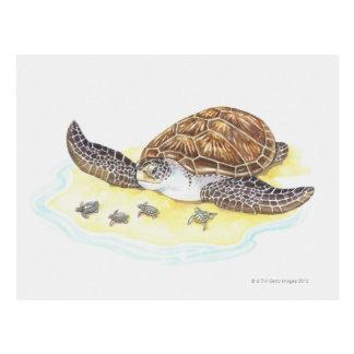 Tortuga y bebés de mar tarjetas postales
