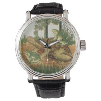 Tortuga y reloj realmente extraños de las ranas