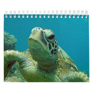 Tortugas 2015 de Hawaii de la bahía de Hanauma Calendarios