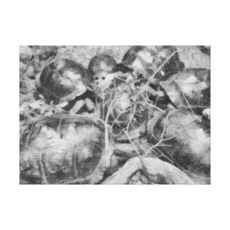 Tortugas agrupadas juntas lona estirada galerías