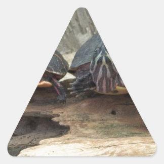 Tortugas de Chillaxing Pegatina Triangular