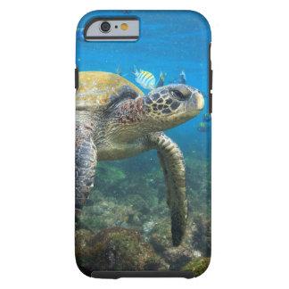 Tortugas de las Islas Galápagos que nadan en Funda De iPhone 6 Tough