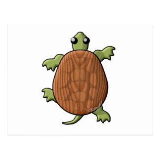 Tortugas de madera postal