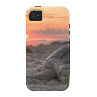 Tortugas de mar en la puesta del sol iPhone 4/4S fundas