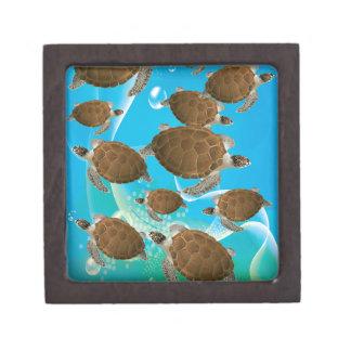 Tortugas de mar verde asombrosas caja de joyas de calidad