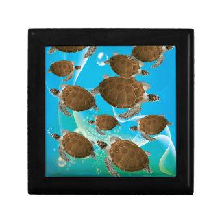 Tortugas de mar verde asombrosas cajas de regalo