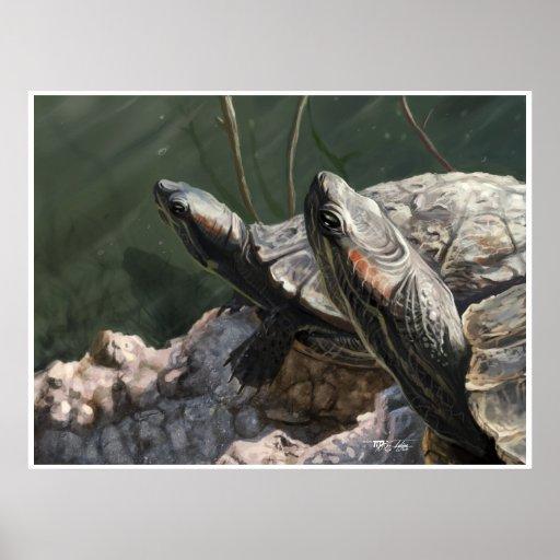 Tortugas del EL Dorado: Baño de Sun Póster