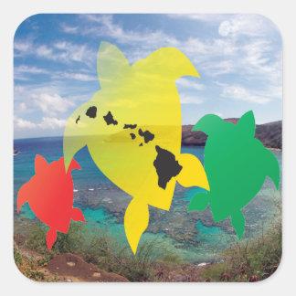 Tortugas del reggae de Hawaii Pegatina Cuadrada