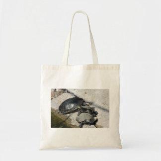 Tortugas del resbalador en una foto de la fila bolsas de mano