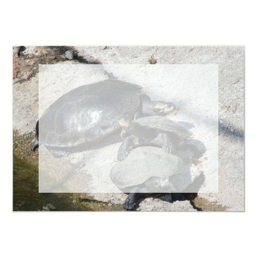 Tortugas del resbalador en una foto de la fila invitación 12,7 x 17,8 cm