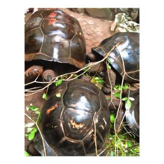 Tortugas en descanso membretes personalizados
