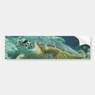 Tortugas en Hawaii Pegatina De Parachoque