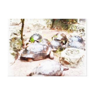 Tortugas en una cola impresión en lienzo estirada