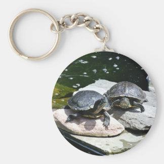 Tortugas gemelas - llavero redondo tipo pin